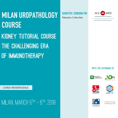 MILAN UROPATHOLOGY COURSE. Kidney tutorial course - the challenging era of Immunotherapy